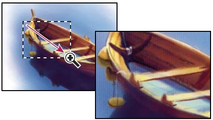 """Перетаскивание инструмента """"Масштаб"""" для увеличения масштаба просмотра изображения"""