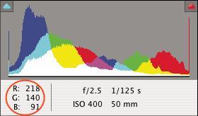"""В диалоговом окне """"Camera Raw"""" отображаются значения RGB для пиксела, на который наведен курсор."""