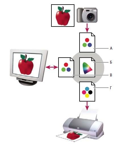 Управление цветом с помощью профилей